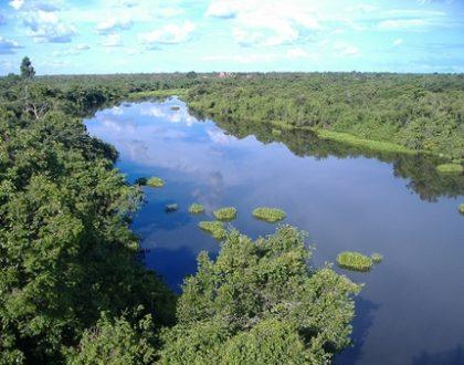 Área de proteção ambiental (APA)