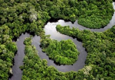 O estudo e o respectivo relatório de impacto ambiental – eia/rima